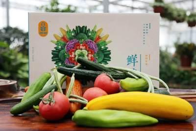 158蔬菜礼箱(内部结算)
