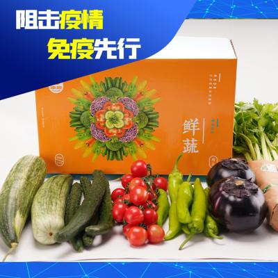 【阻击疫情,免疫先行】博华蔬菜礼盒B 6-7种蔬菜