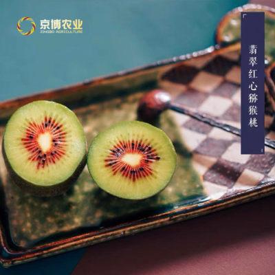 蒲江翡翠红心猕猴桃新鲜孕妇水果大果包邮当季奇异果整箱弥猴桃