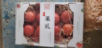 草莓番茄礼盒(内部领用)