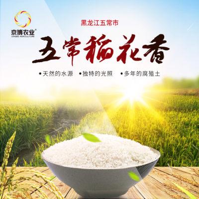 五常大米溯源精品稻花香2号