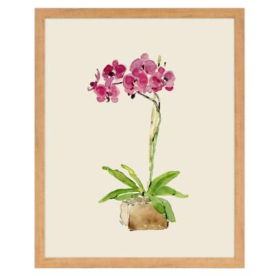 装饰画盆栽a9-1(兰花)钜惠购 满340元立减108.89元,使用融汇通支付再立减100元